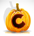 Halloween pumpkin c vector