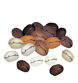 Different coffee beans background vector