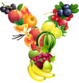 Letter y composed of different fruits with leaves vector
