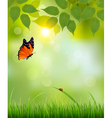 Nature summer background with leaves and grass vector