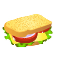 Cheese sandwich vector