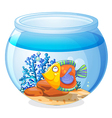 An aquarium with a fish vector