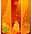 Vertical harvest banners vector