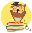 Crazy owl sitting on books vector