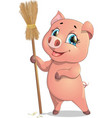 Pig and broom vector