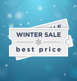 Two tickets to the winter sale and best price vector