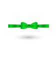 Green elegant bow vector