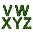 Alphabet vwxyz vector