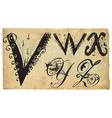 Curly playful alphabet - hand drawn - part v-z vector