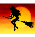 Witch on background of the moon vector