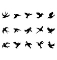 Simple birds flying silhouettes vector