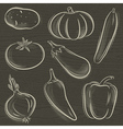 Set of vegetable potato pumpkin cucumber vector