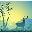 Male stag deer vector