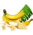 Ripe yellow bananas with slices and leaves vector