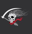Death with scythe vector