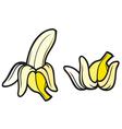 Peeled banana and banana vector