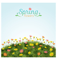 Flowers spring field season background vector