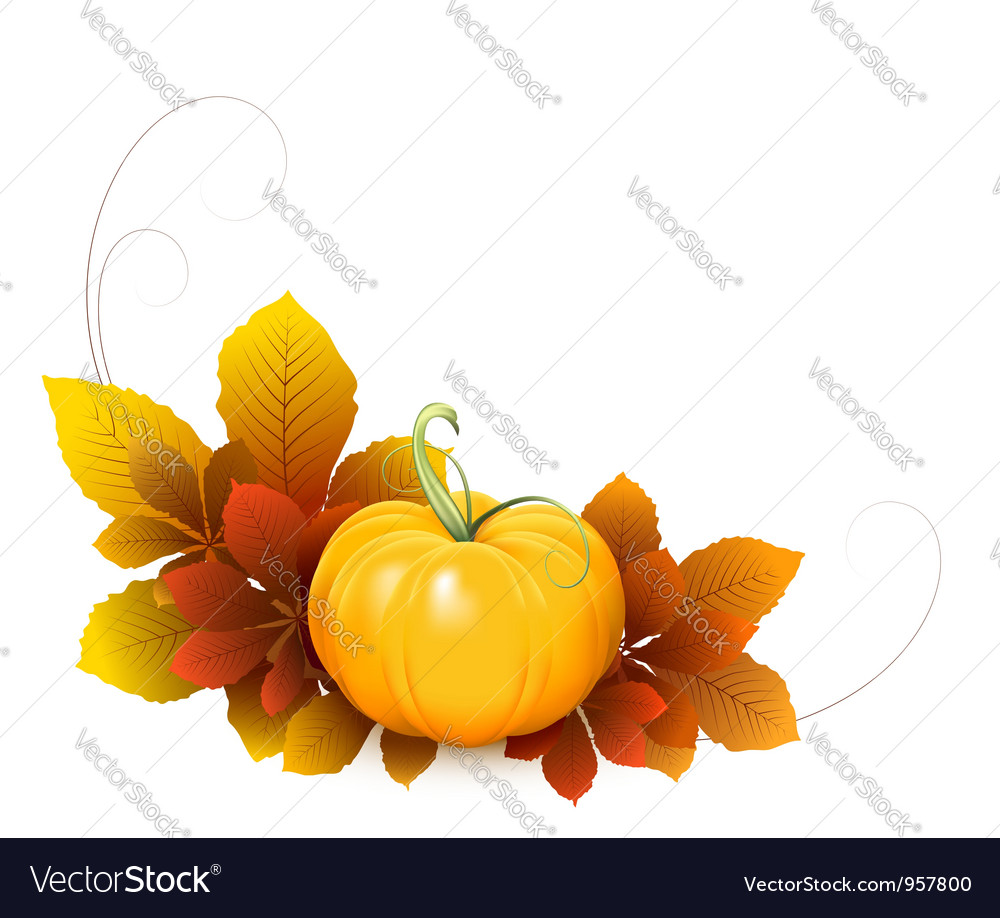 Pumpkin and autumn leaves vector | Price: 1 Credit (USD $1)