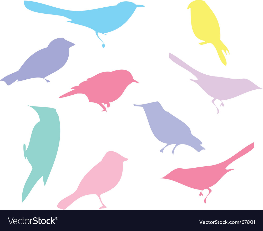 Colour birds vector | Price: 1 Credit (USD $1)