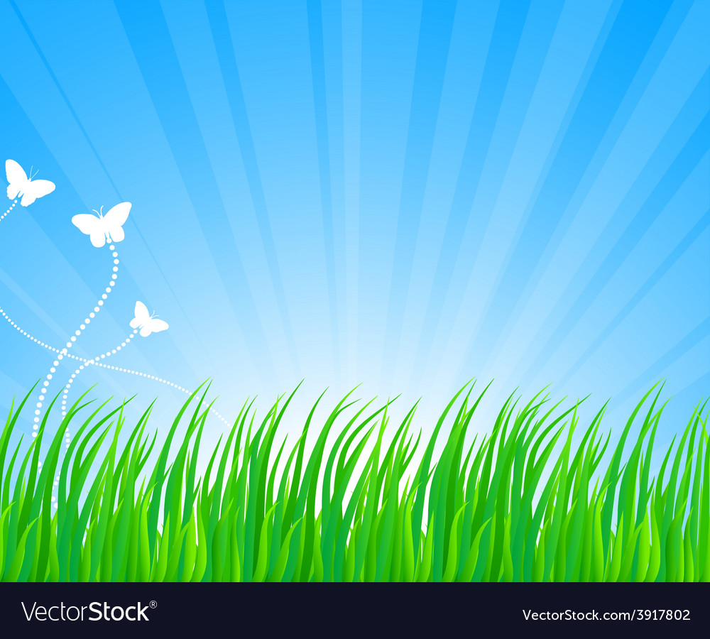 Lush grass vector | Price: 1 Credit (USD $1)
