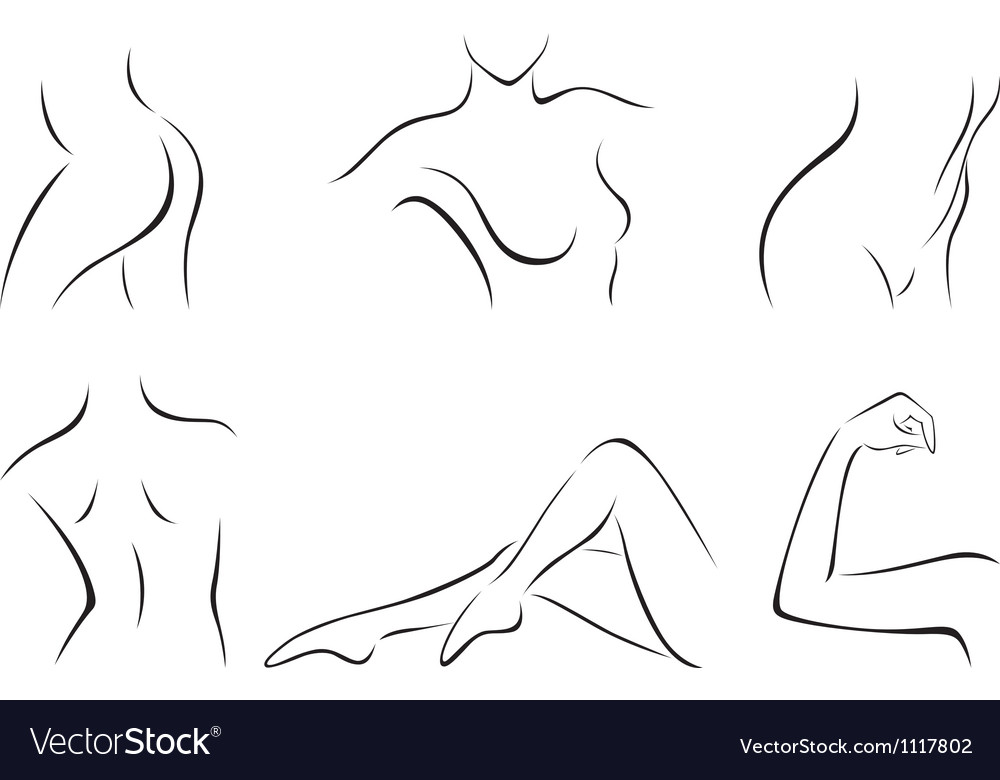 Set of stylized body parts vector | Price: 1 Credit (USD $1)