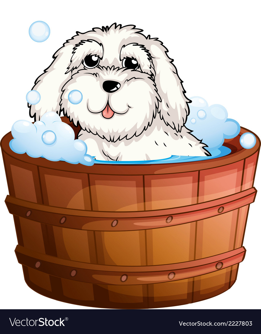 A puppy taking a bath vector | Price: 1 Credit (USD $1)