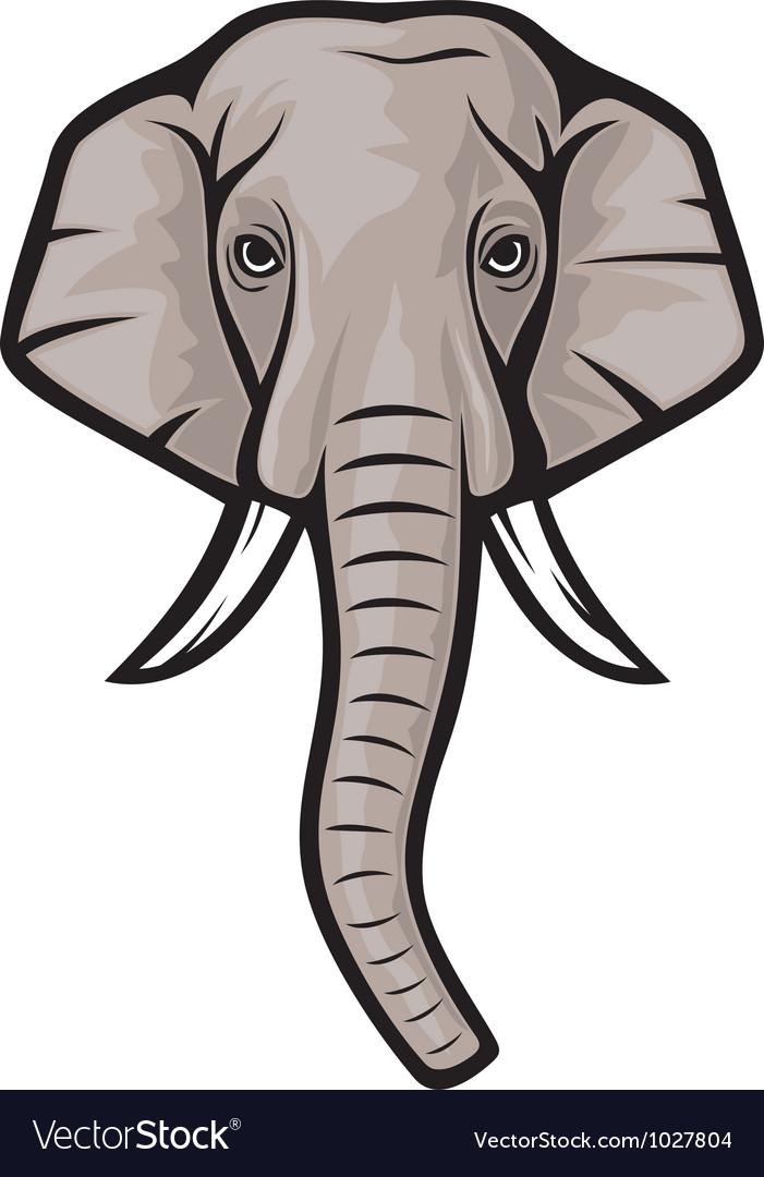 Indian elephant head vector   Price: 1 Credit (USD $1)
