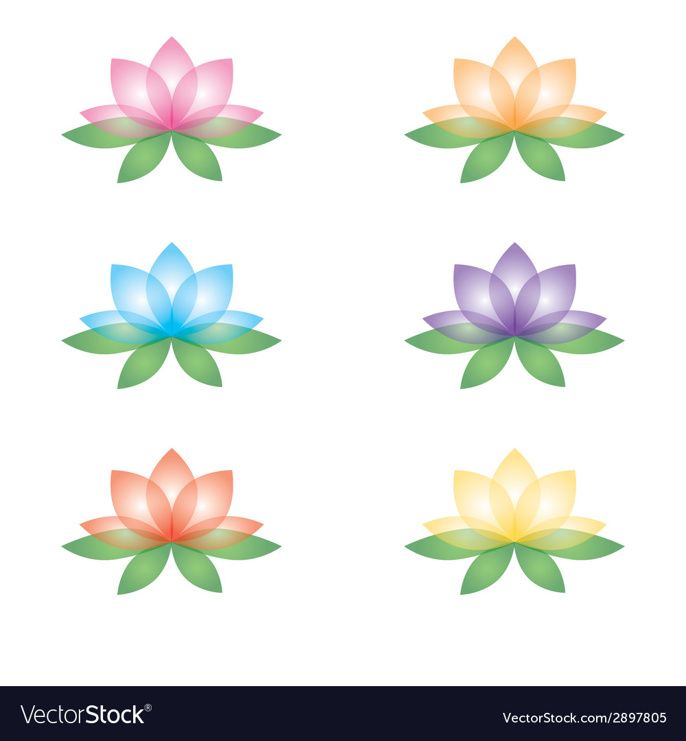 Set of lotus flowers on a white background vector | Price: 1 Credit (USD $1)