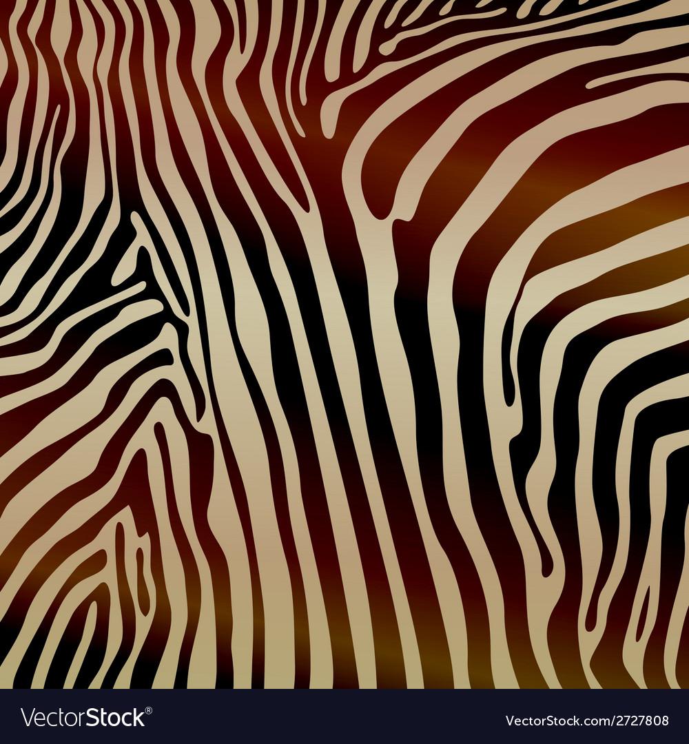 Savannah pattern background design elements zebra vector | Price: 1 Credit (USD $1)