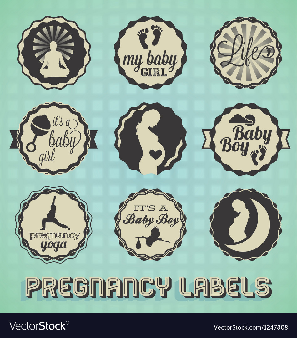 Vintage pregnancy labels and icons vector | Price: 3 Credit (USD $3)