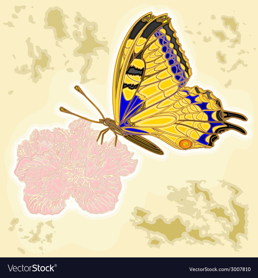 Butterfly and flower as engraving vintage vector | Price: 1 Credit (USD $1)