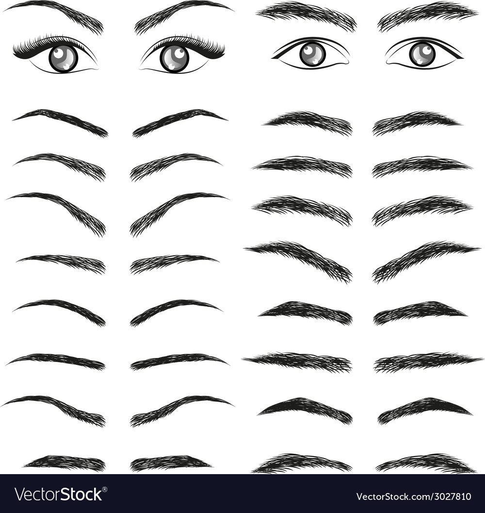 Eyes eyebrow women and man vector | Price: 1 Credit (USD $1)