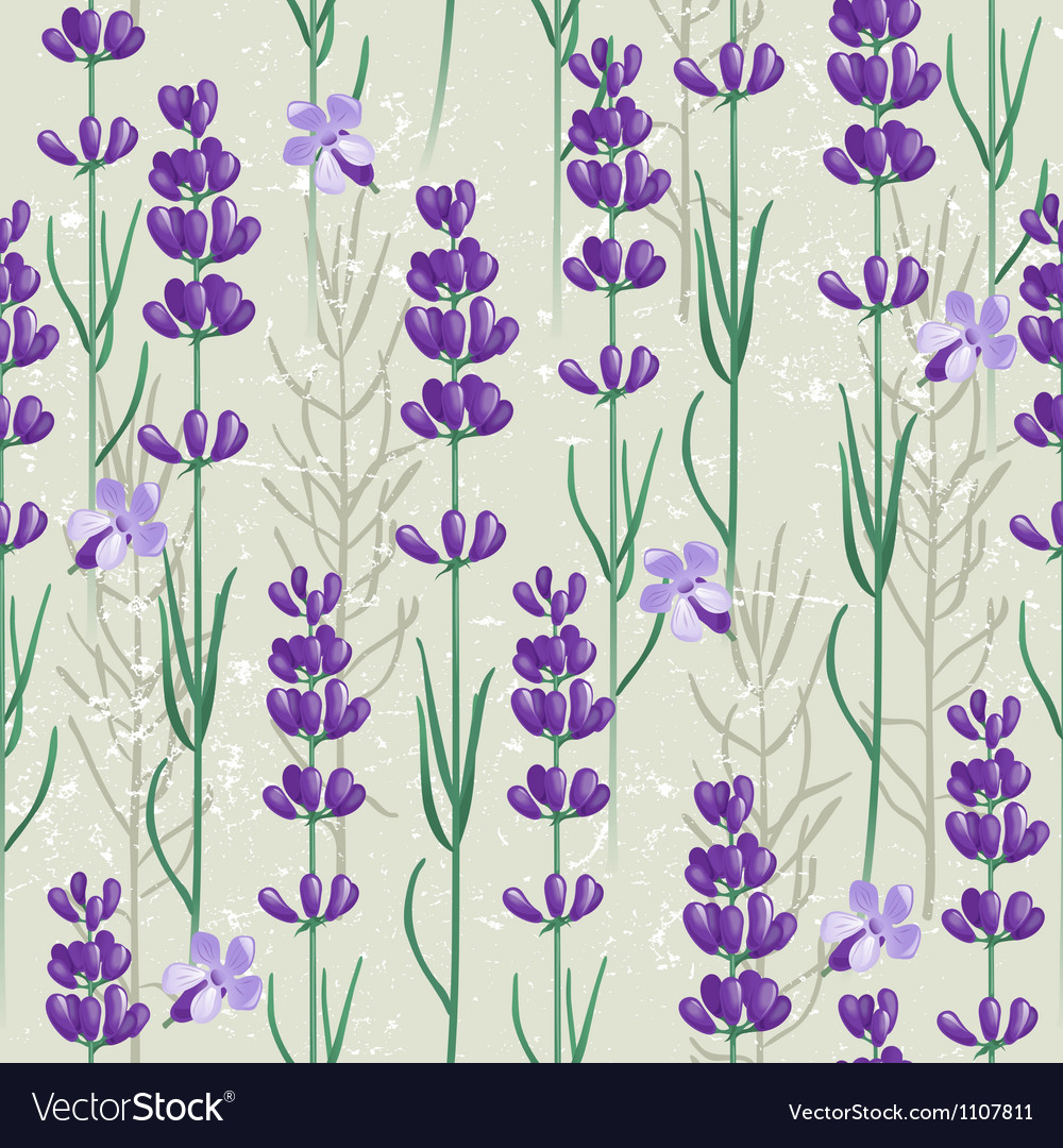 Lavender seamless vector | Price: 1 Credit (USD $1)