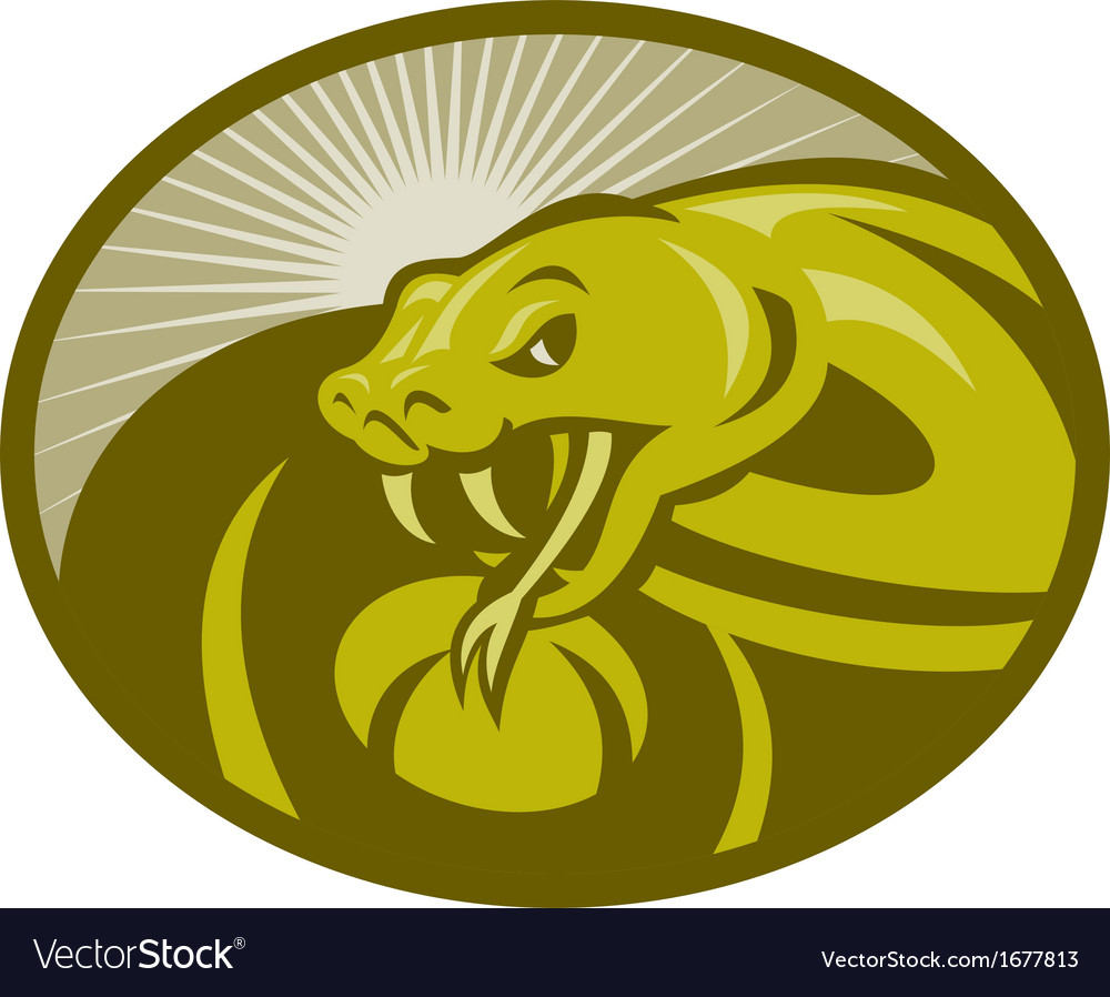 Angry snake viper baring its fangs vector | Price: 1 Credit (USD $1)