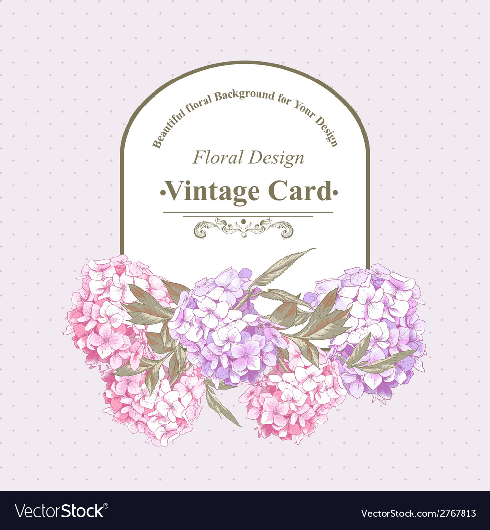 Vintage greeting card with hydrangea and peonies vector | Price: 1 Credit (USD $1)