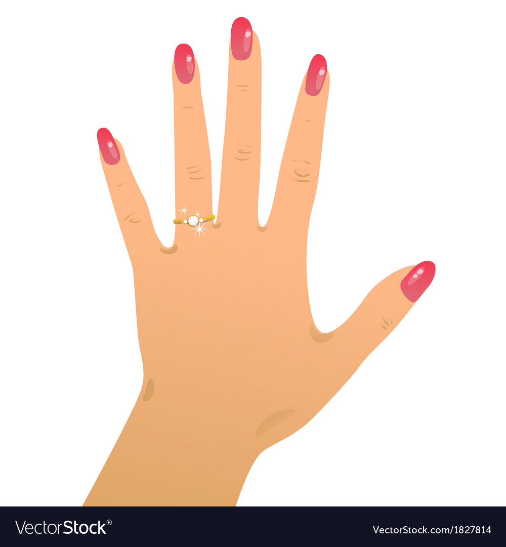 Engagement ring2 vector | Price: 1 Credit (USD $1)