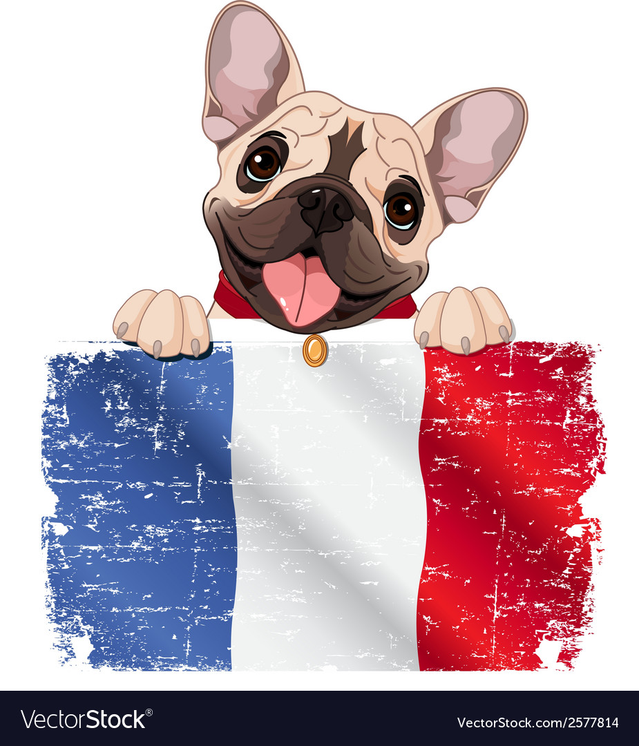 French bulldog fan vector | Price: 1 Credit (USD $1)