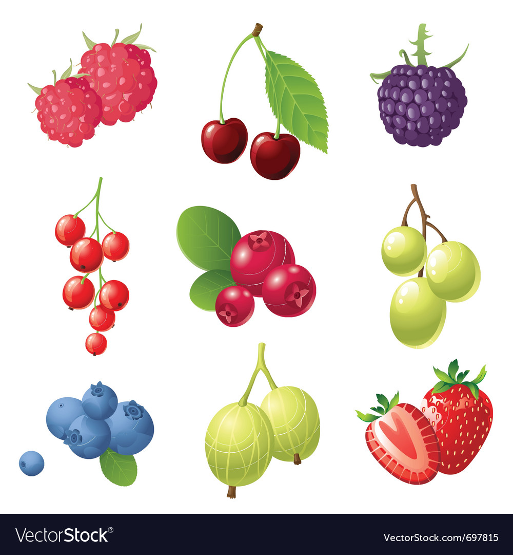 9 sweet berries icons set vector | Price: 1 Credit (USD $1)
