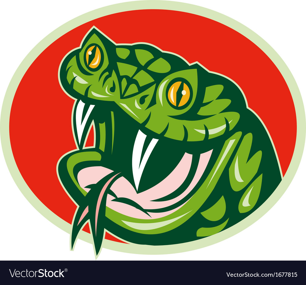 Viper snake with fangs vector | Price: 1 Credit (USD $1)