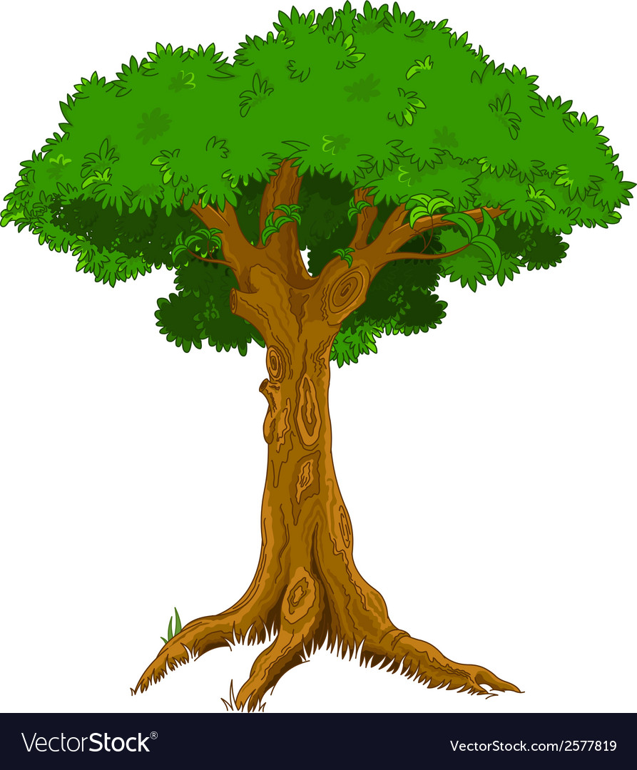 Majestic tree vector | Price: 1 Credit (USD $1)