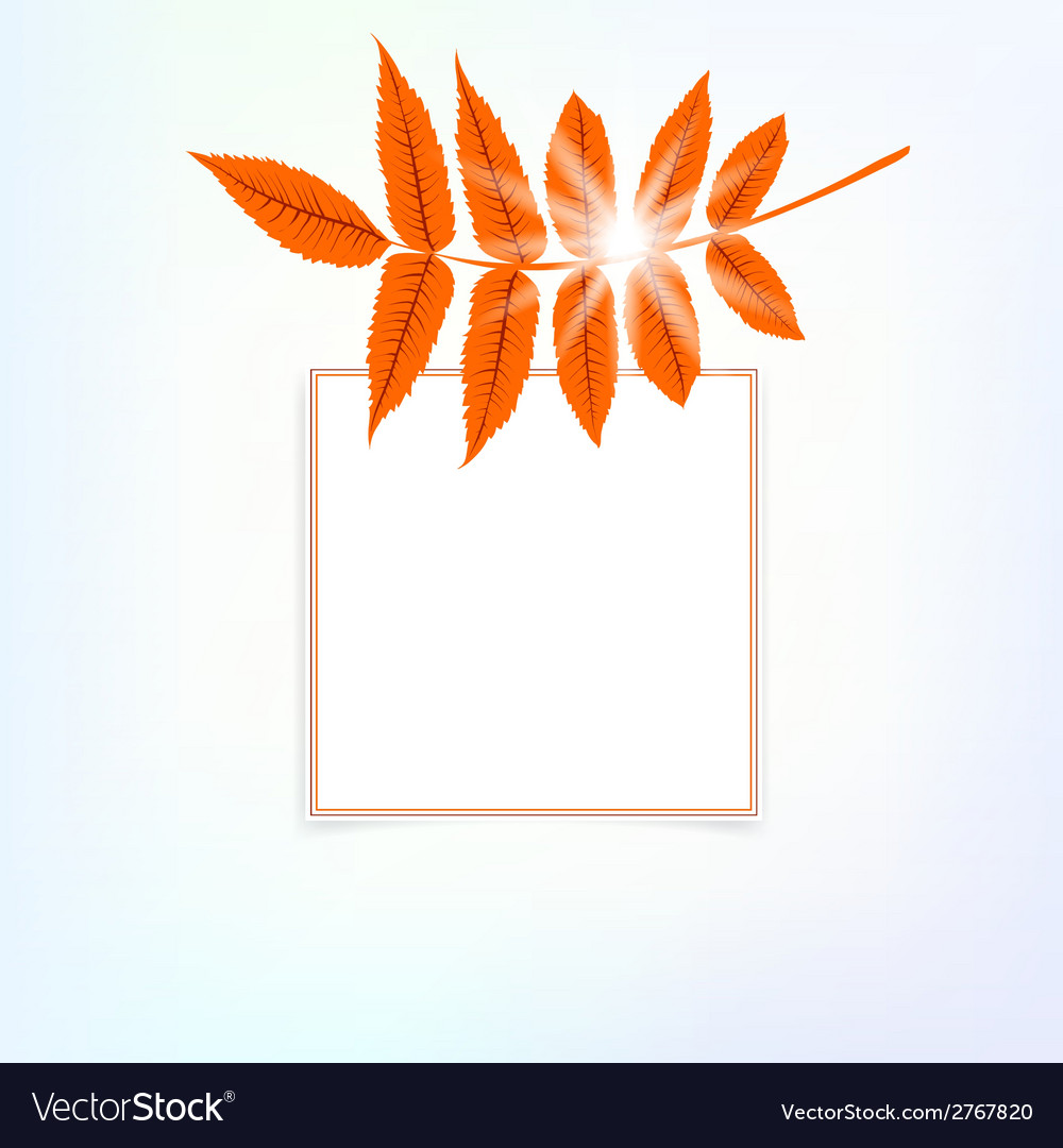 Card with autumn decor vector | Price: 1 Credit (USD $1)