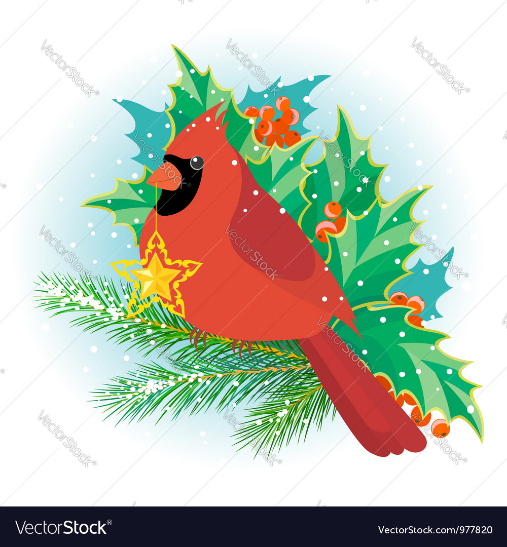 Christmas cardinal vector | Price: 3 Credit (USD $3)