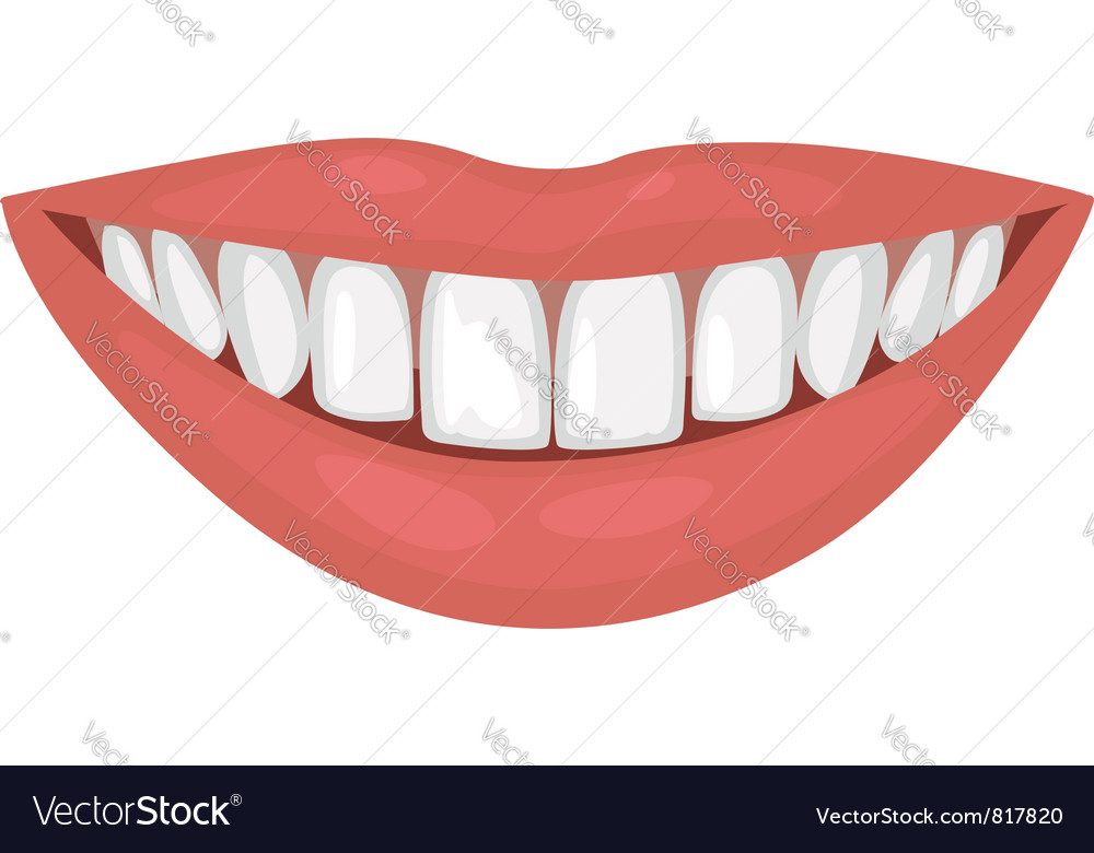 Healthy smile vector | Price: 1 Credit (USD $1)