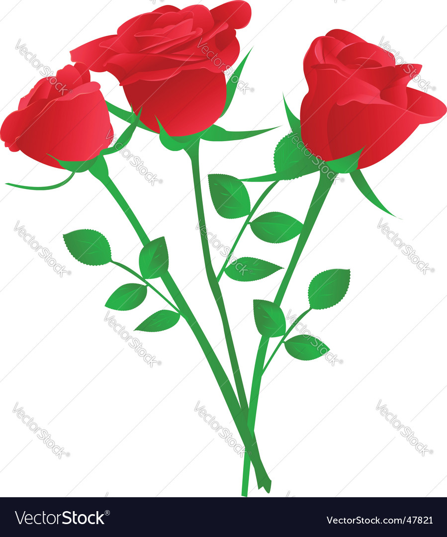 Bouquet of three red rose vector | Price: 1 Credit (USD $1)