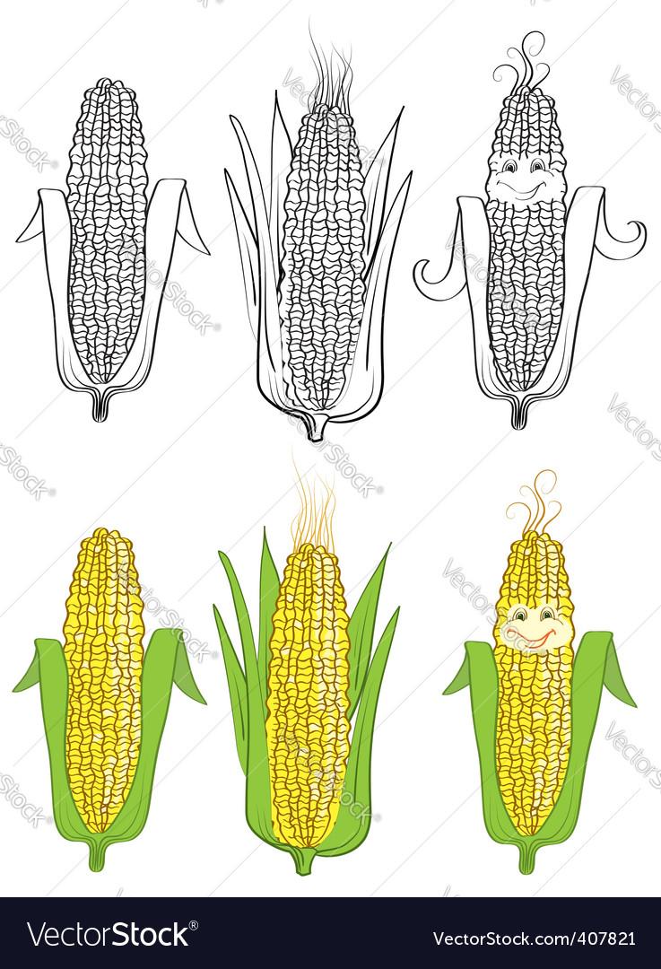 Corn cartoon vector