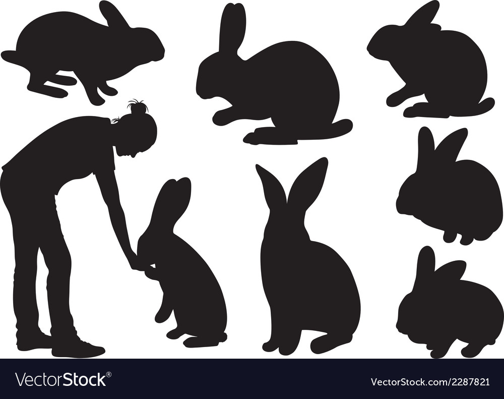 Set of different rabbits vector | Price: 1 Credit (USD $1)