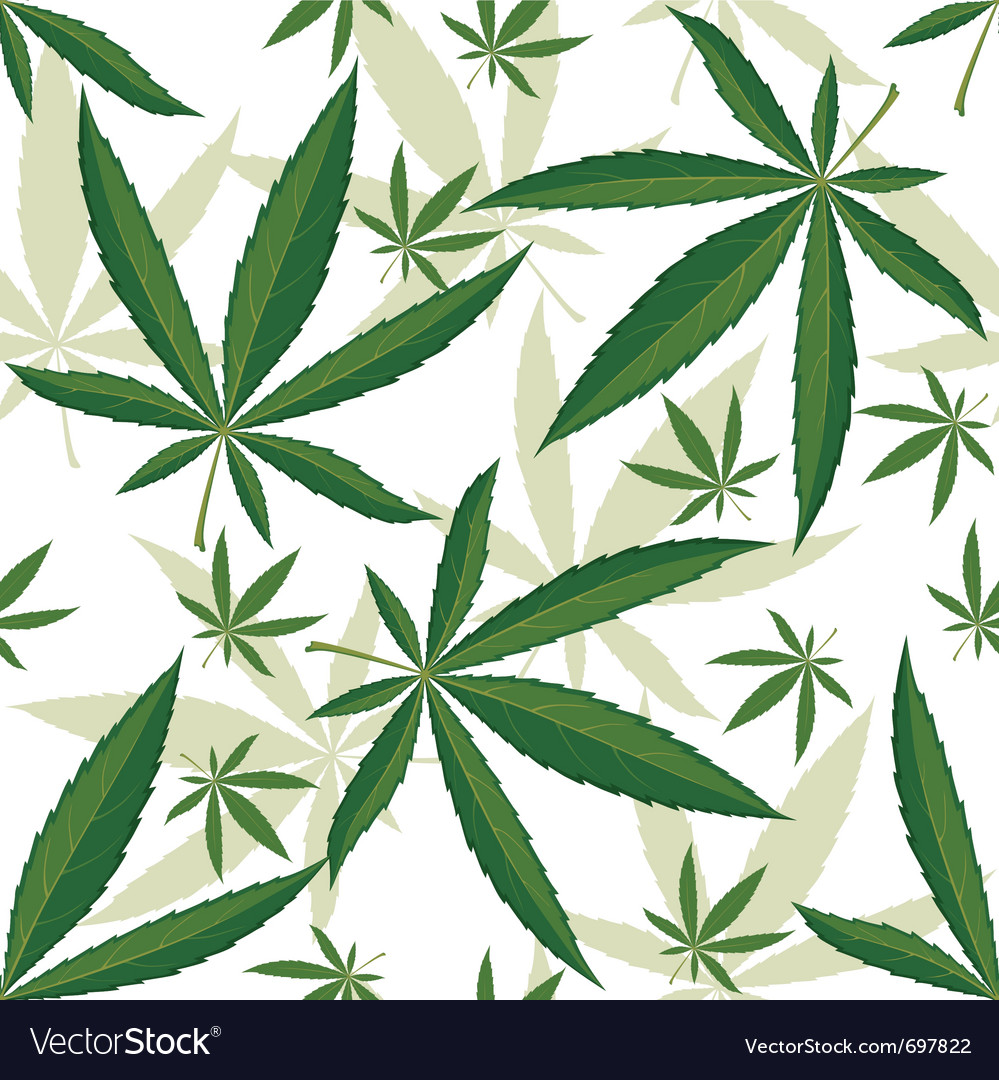 Cannabis seamless ornament over white background vector | Price: 1 Credit (USD $1)