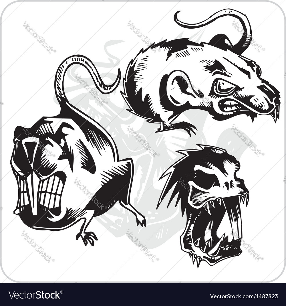 Set - aggressive rat vector | Price: 1 Credit (USD $1)