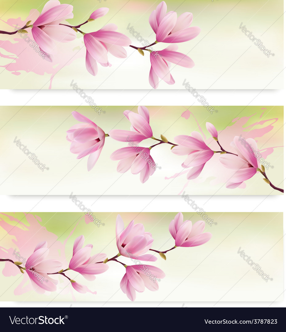 Three spring banners with blossom brunch of pink vector | Price: 3 Credit (USD $3)