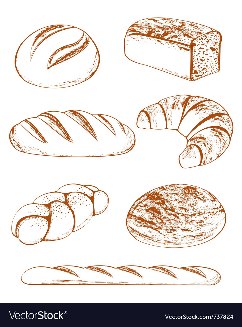Collection of breads vector | Price: 1 Credit (USD $1)